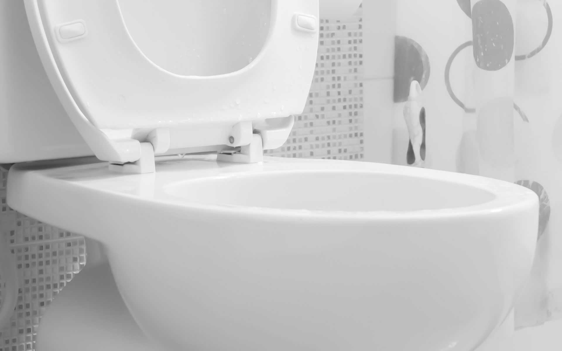 Homer Glen Toilet Repair